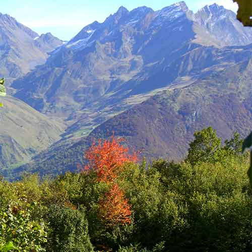Pyrenees autumn